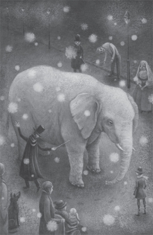 Image result for the magician's elephant